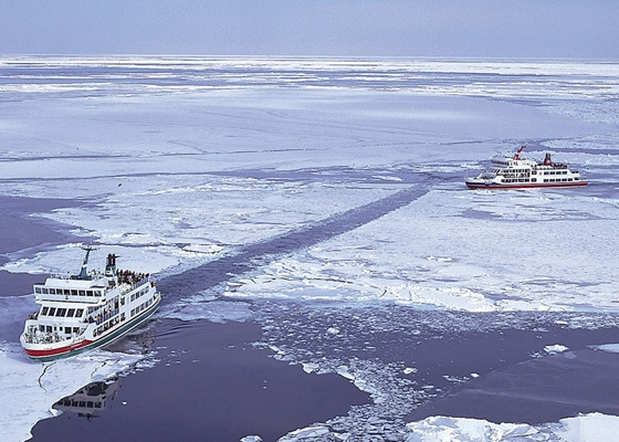 Drift Ice Cruise
